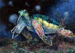 Art by Kuan Wen Chin