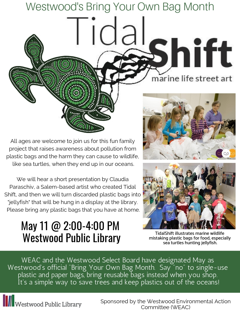 Tidal Shift flyer